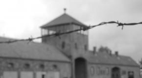 Sur la route des derniers nazis