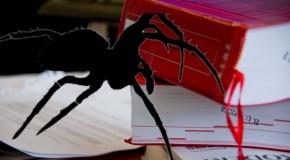 L'araignée avait toujours faim